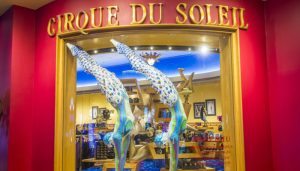 Cirque Du Soleil - Orlando